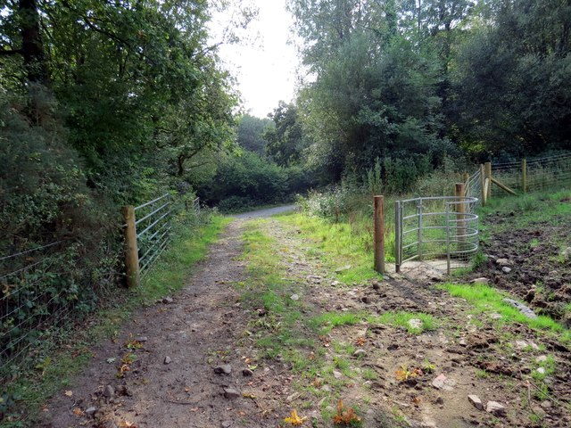 Llwybr Blaenau Path