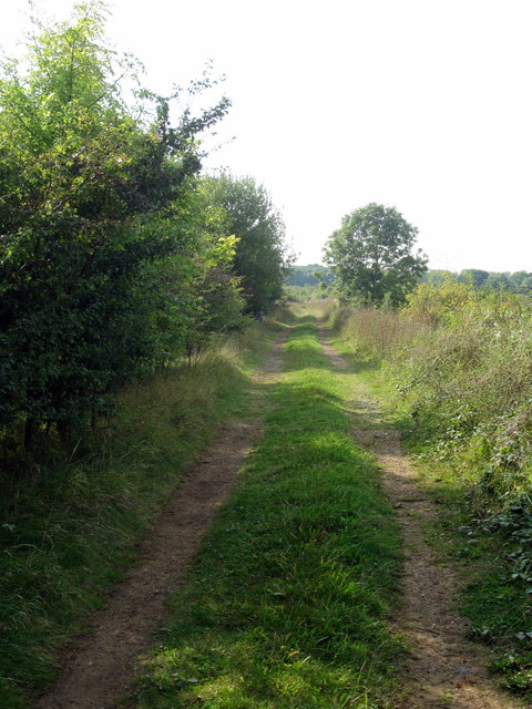 Footpath near the firing range