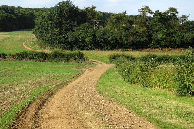 Footpath to Wood Farm