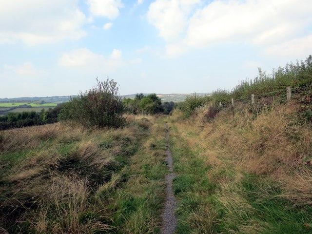 Llwybr Cae'r Bryn Path