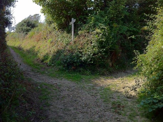 Pettycrate Lane and Langdon Lane