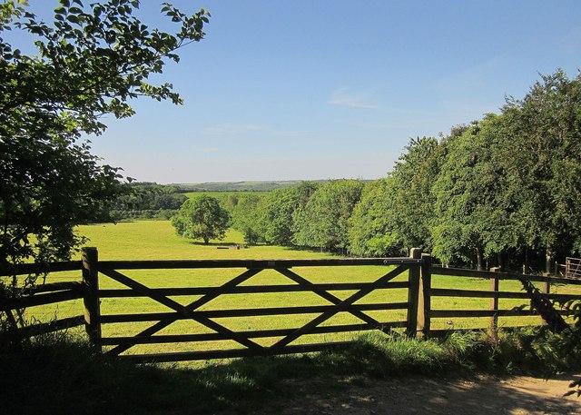 Field near Trevollard