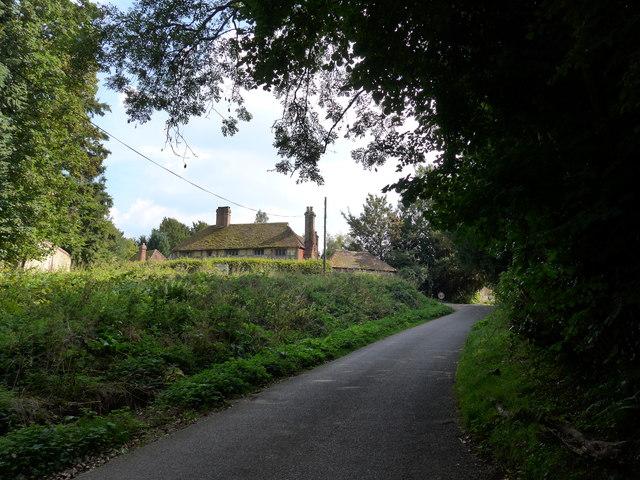 A steady stroll through stunning Stedham (3)
