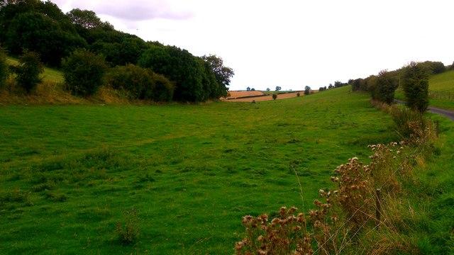 Haver Dale, near West Lutton