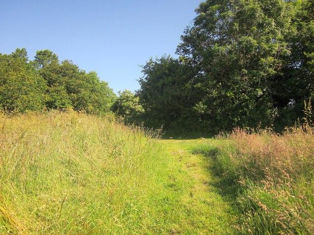 Path near Trevollard