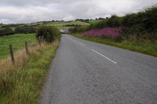 The B5384 east of Pandy Tudur
