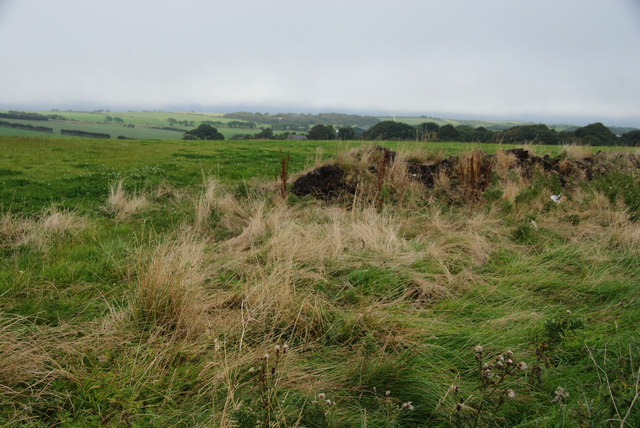 Grass verge and fields above Bell Hill