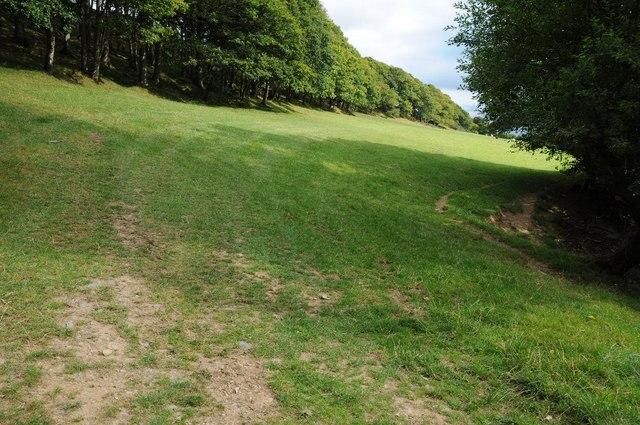 Field near Ffrith-arw