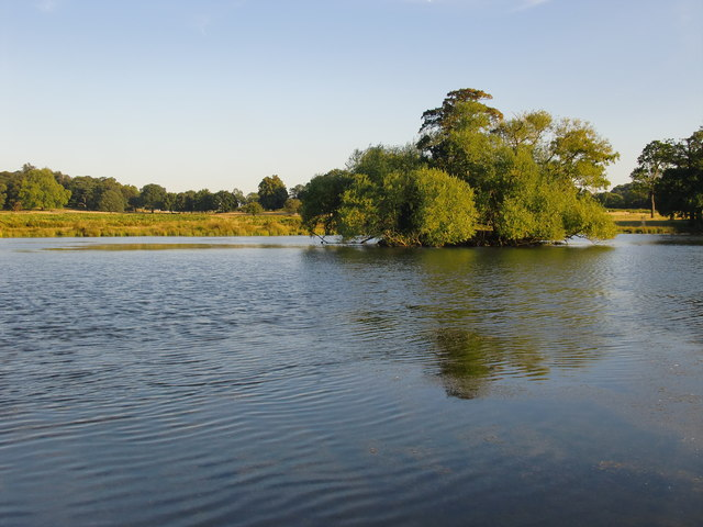 Island in the Lower Pen Pond, early September