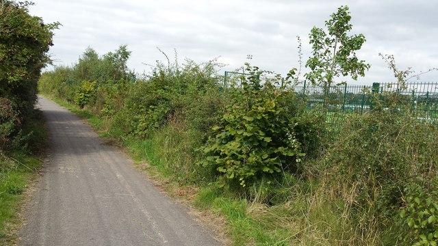 Path in Lostock
