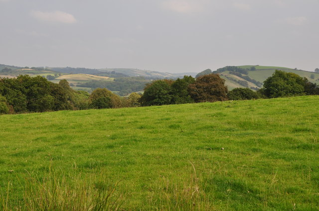 West Somerset : Grassy Field