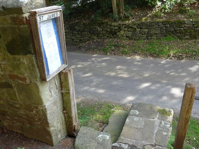 A steady stroll through stunning Stedham (8)