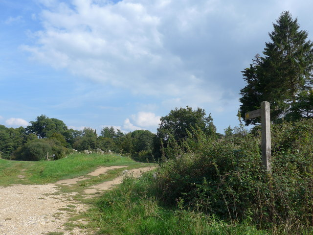 A steady stroll through stunning Stedham (26)