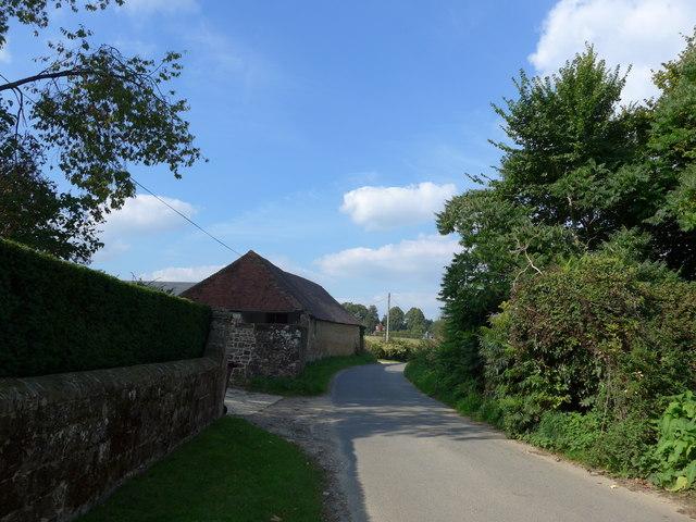 A steady stroll through stunning Stedham (27)