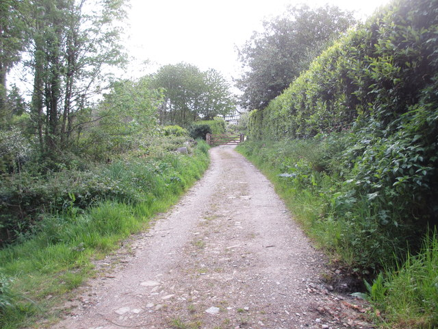 Track to Cott Road