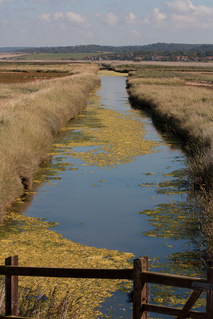 Along the cut to Salthouse