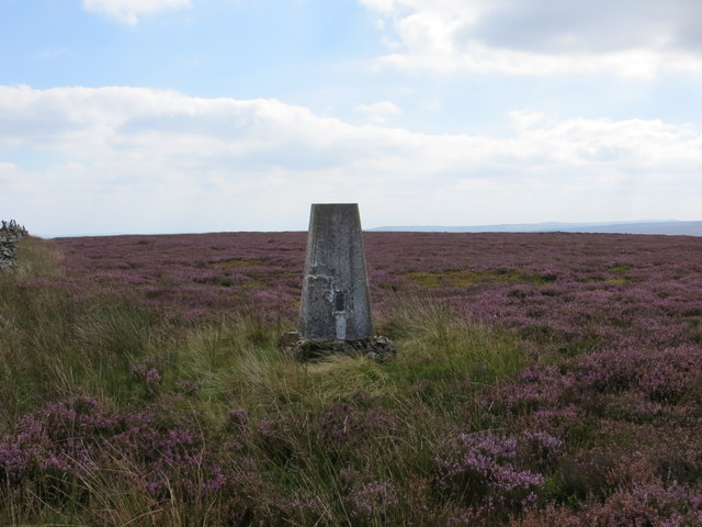 Heather covered Ouster Bank with its Trig Pillar