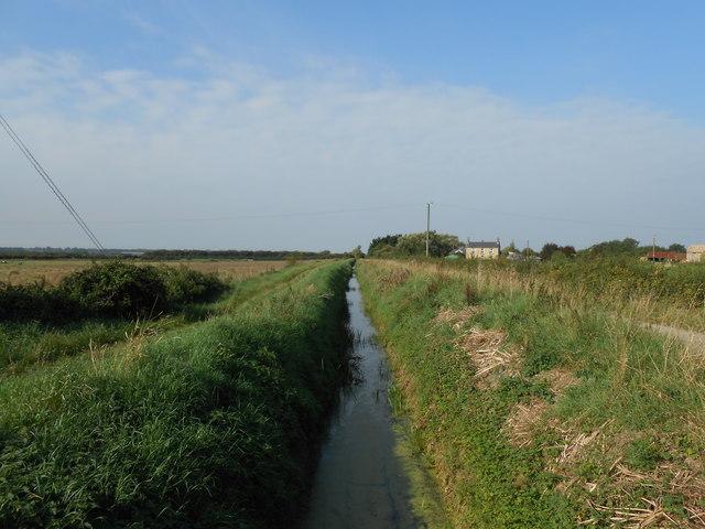 Drainage Ditch off Grunty Fen Road, Witchford