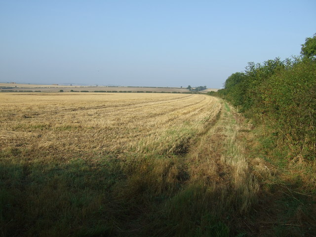 Stubble field beside Woldgate Roman Road