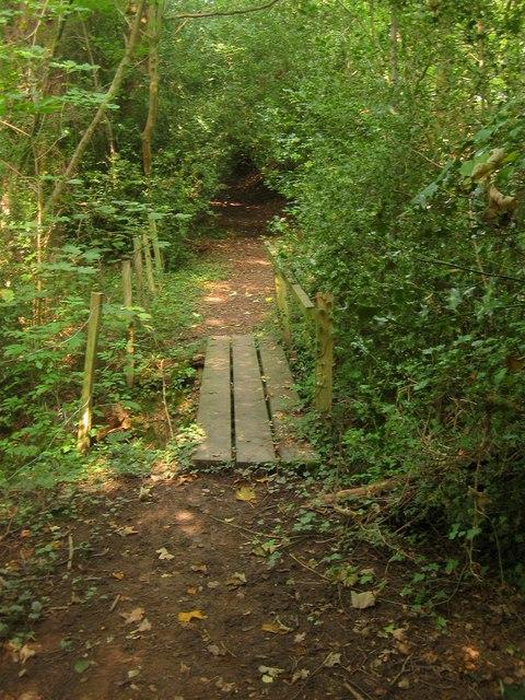 Footbridge, Bolney Wood