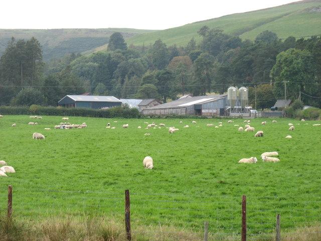 Nant-yr-hafod farm