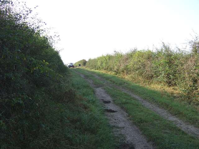 Green lane towards Thornholme