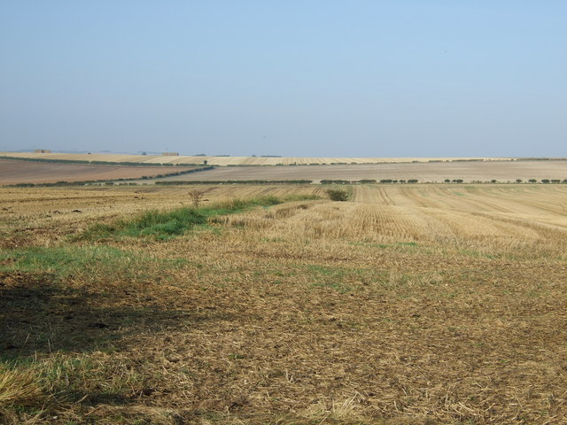 Field boundary, Thornholme Field