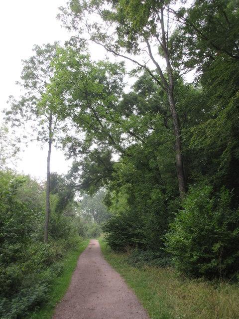 Bridleway to Woldingham School