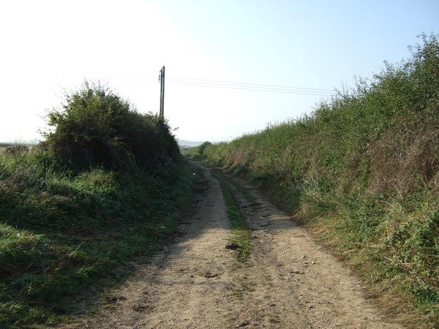 Green lane towards Thornholme