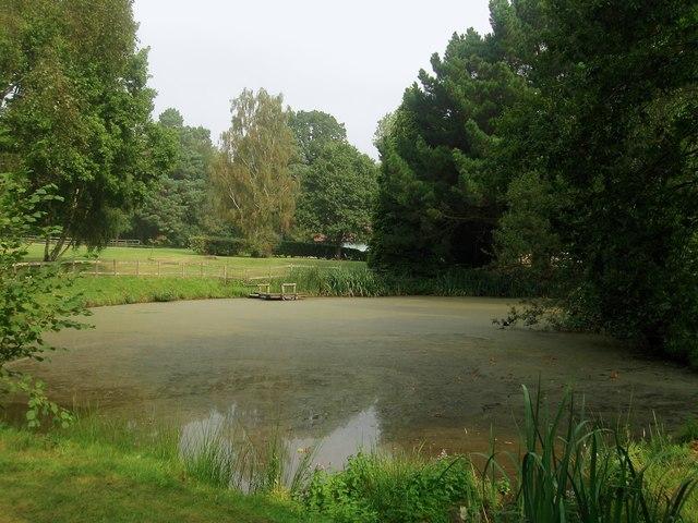Pond near Rowlands