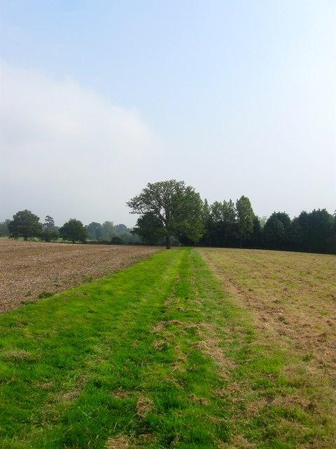 Footpath to Buncton Lane