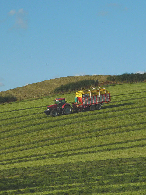 Grass harvesting on Cappleside Hill