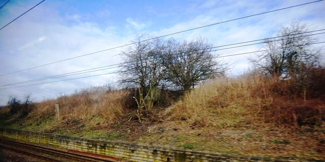Railway cutting, East Coast Main Line