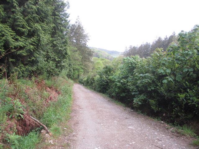 Track to Restormel Farm