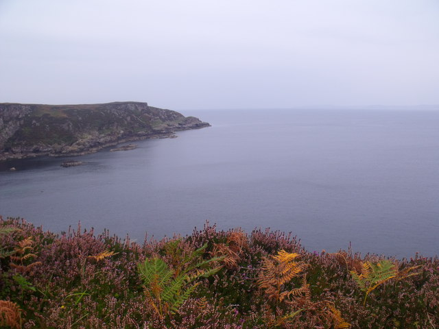 The heathery edge of Rubha Duilich by Altahdhu near Lochinver