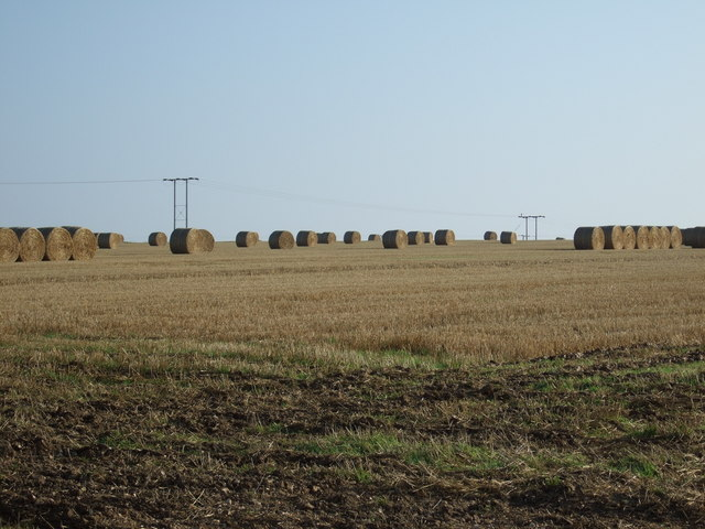 Stubble field with round bales, Thornholme Field