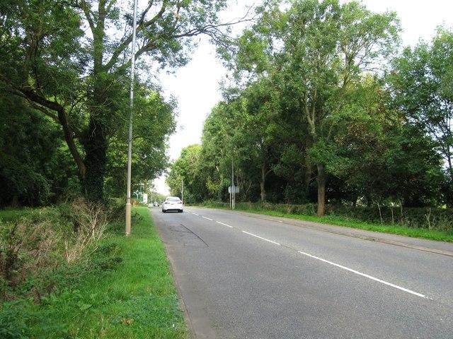 Cottingham Road