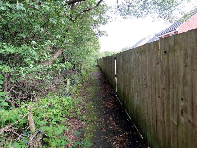 Llwybr Ffarm Blaenau Mawr Farm Path