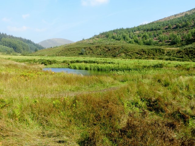 Pond in the Dunsop valley