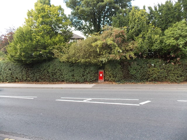 Newly-painted postbox in an Alderley Road hedge in Wilmslow