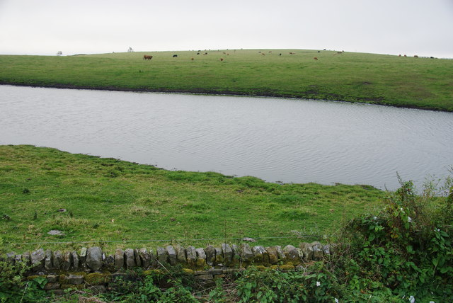 Grazing land and pond near Staintondale Moor