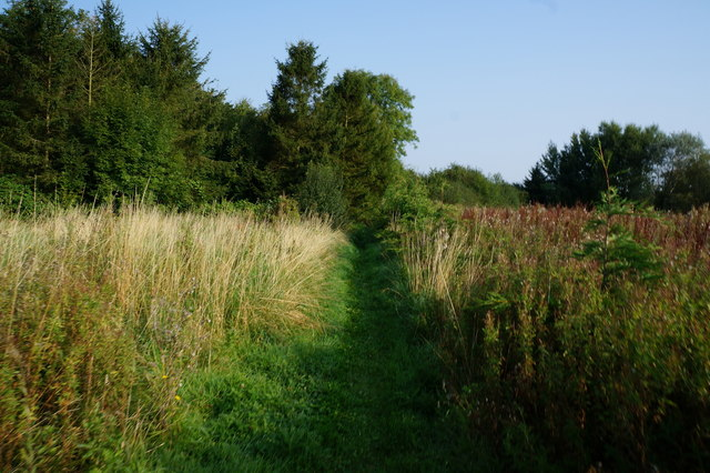 Footpath leading to North Thoresby