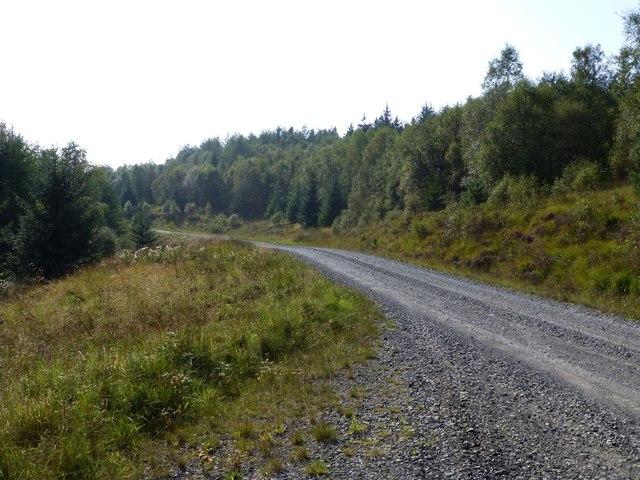Forest Drive, Kielder Forest