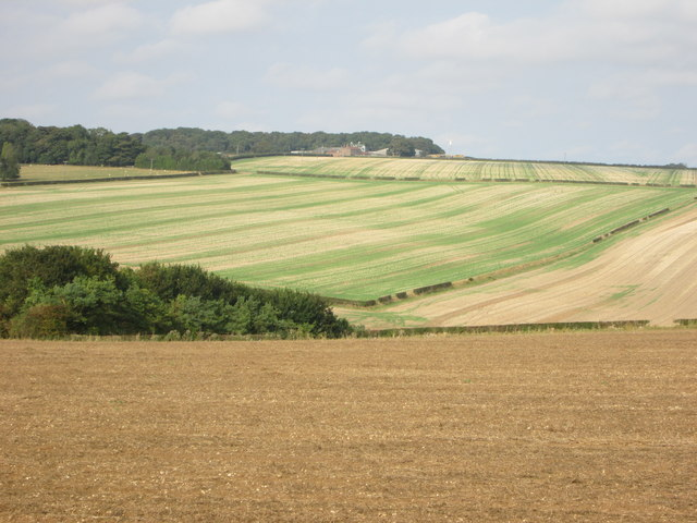 Yorkshire  Wolds  fieldscape. Harvest  Home.