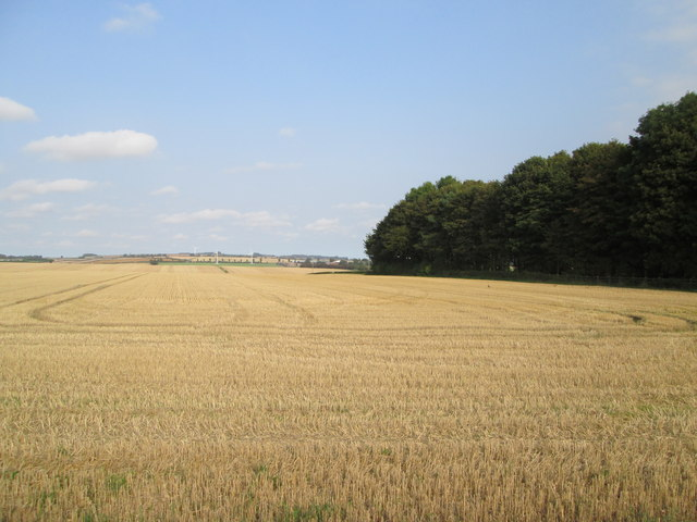 Stubble  field  and  trees  around  covered  Reservoir