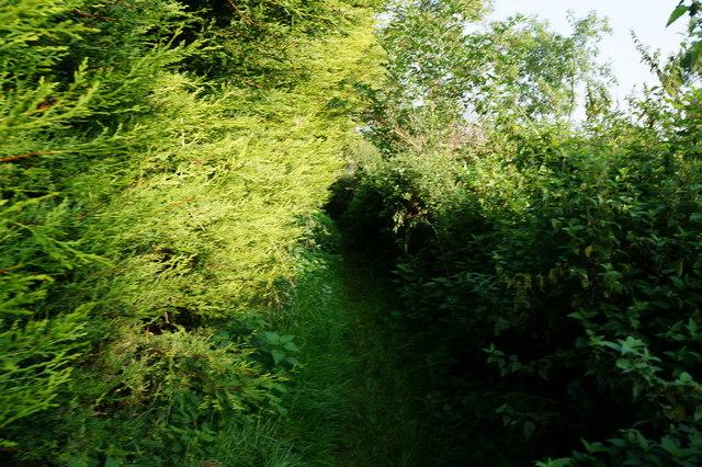 Path off Stanholme Lane, North Thornesby