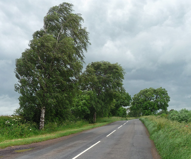 Waltham Lane near Scalford