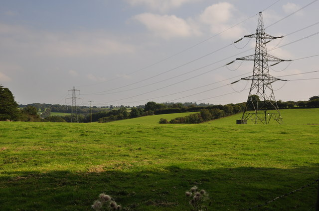 Mid Devon : Grassy Field & Pylons