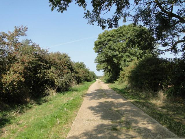 Road past Friar's Thorne Farm