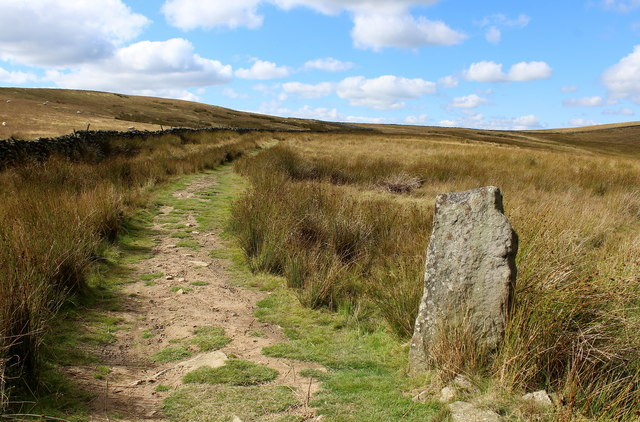 Boundary Stone on Carlton Moor